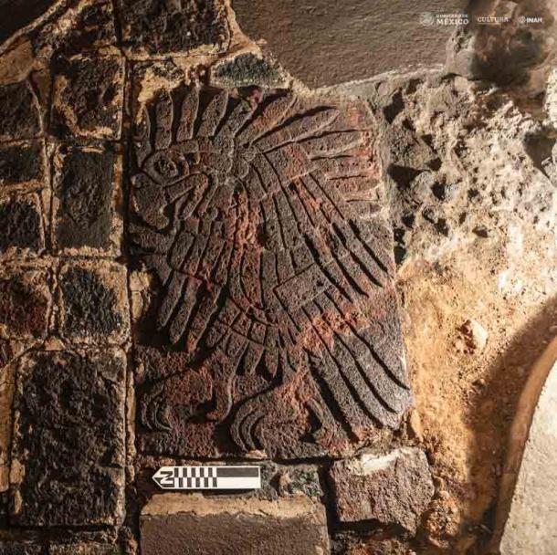 El bajorrelieve del águila real, que mide 1.06 metros (3.47 pies) de largo y 0.7 metros (2.26 pies) de ancho, fue descubierto en el lado sur del Templo Mayor en la Ciudad de México (Mirsa Islas / INAH)