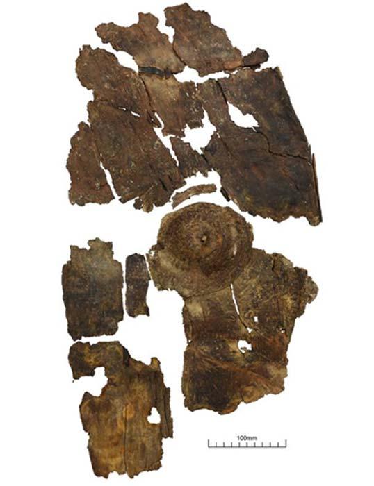 El escudo de la corteza se había encogido y deformado después de siglos en el agua. (Universidad de Leicester / Fair Use)