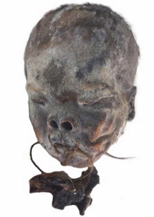 Los expertos estudiaron cuatro cráneos fragmentados y cortados enterrados de forma aislada en el valle de Copiapó, en el norte de Chile. (F. Garrido y C. Morales / Uso justo)