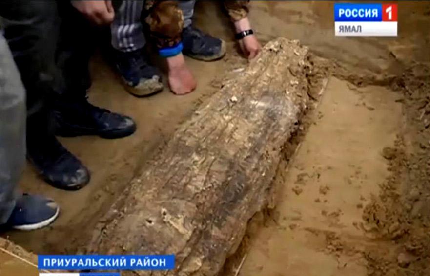 Los arqueólogos que trabajan en el sitio, cerca de Salejard, dicen sospechar que los restos son de un niño o adolescente del siglo XII o XIII d.C. Imagen: Vesti.Yamal