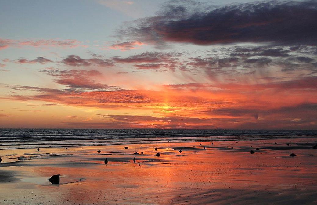 Cantre'r Gwaelod, o La Tierra Baja de Cien: Los tocones son los restos de un bosque antiguo sumergido que se extiende en la costa. Será este un reino hundido perdido?