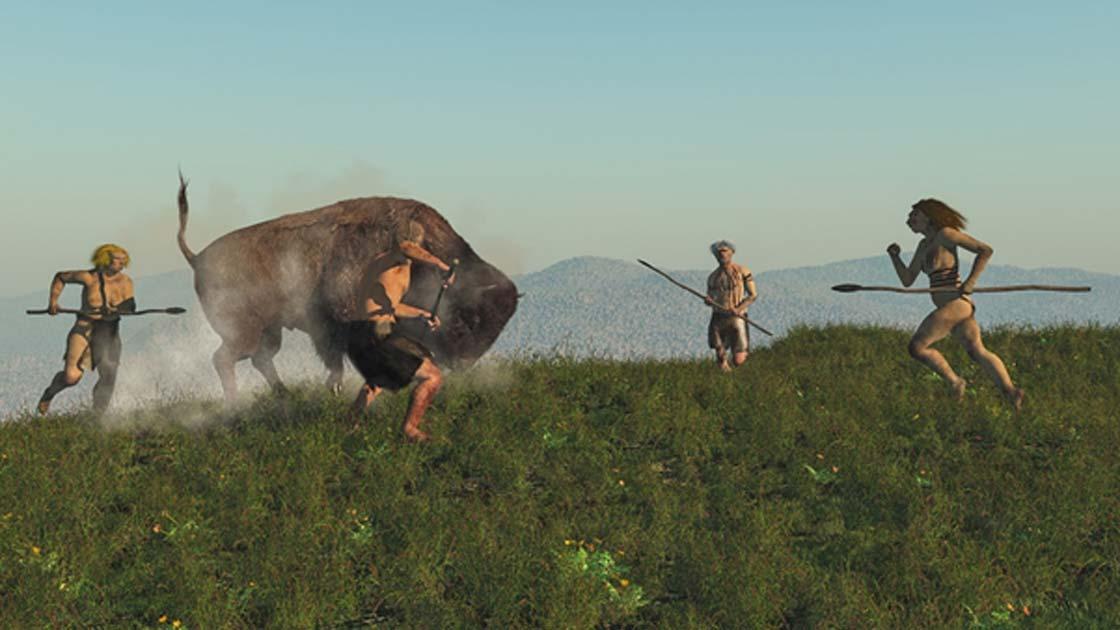 Grupo de neandertales cazando un bisonte. Una nueva investigación confirma que la carne era una parte importante de la dieta neandertal.