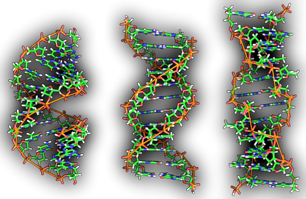 Resultado de imagen de Mensaje 'Divino' Cifrado en nuestro ADN