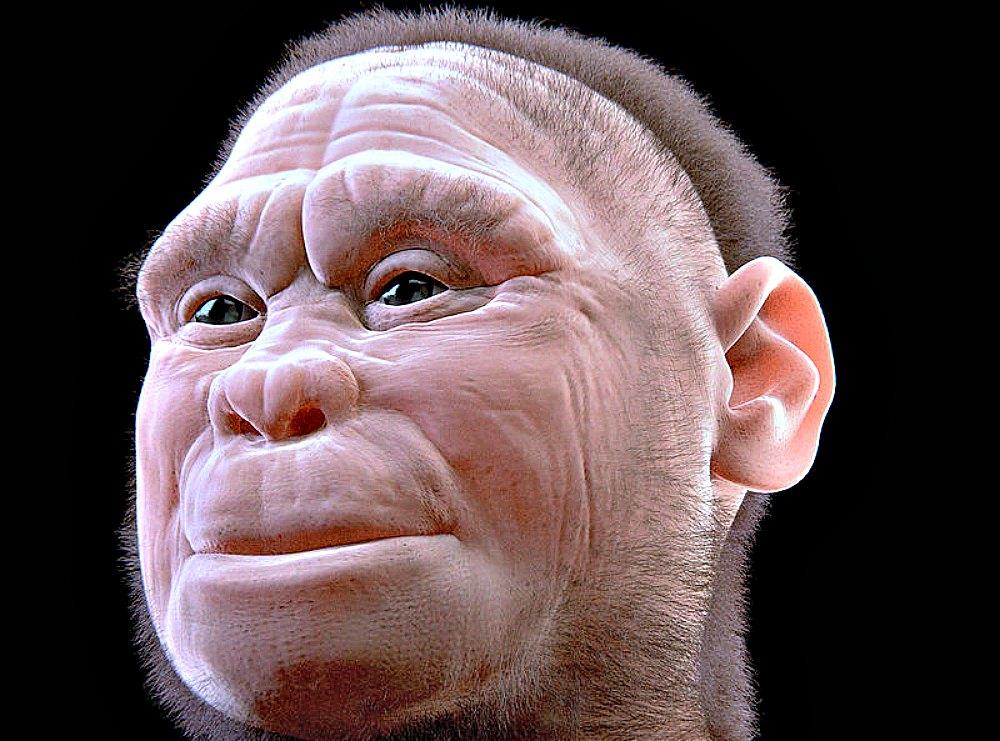 """Portada - En esta fotografía se puede observar la segunda versión (2.0) de la Reconstrucción Facial Forense Arqueológica del individuo LB1 de la especie Homo floresiensis. Ha sido cedida para la exposición """"Facce. I molti volti della storia umana"""". (Cicero Moraes et alii/CC BY – SA 4.0)"""