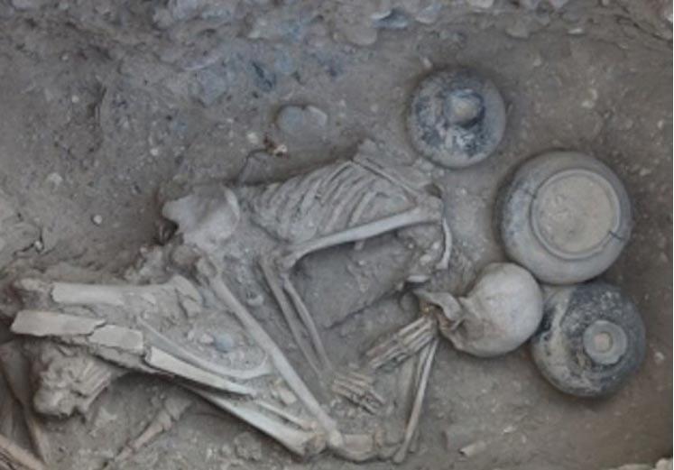 Portada-Imagen de portada Restos humanos de la necrópolis armenia de Karmir Blur (2013) (vchechne.ru).jpg