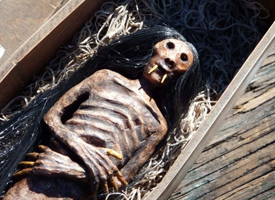 Portada - Cadáver de un supuesto jenglot. Fuente: David Albaugh
