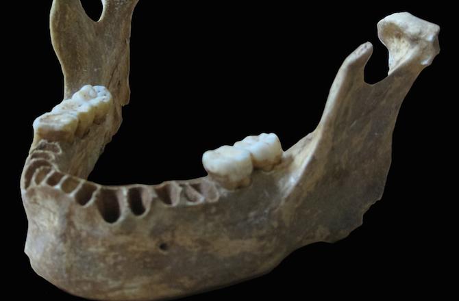"""Portada-La mandíbula del humano moderno de hace 40.000 años """"Oase 1""""-Foto-Svante Pääbo.jpg"""