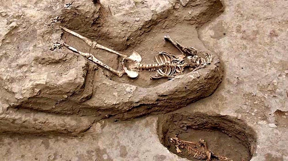 Portada-Dos de los esqueletos de mujeres descubiertos en la margen norte del valle medio de Lambayeque, Perú. (Fotografía: Perú21/Andina)