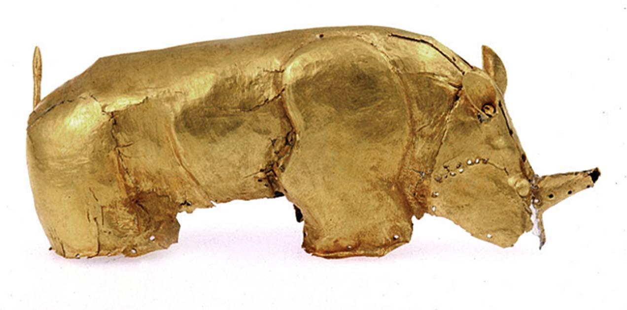 Portada - Rinoceronte de oro, fotografía aportada por Sian Tiley-Nel, comisario artístico de los Museos de la Universidad de Pretoria. (CC BY-SA)