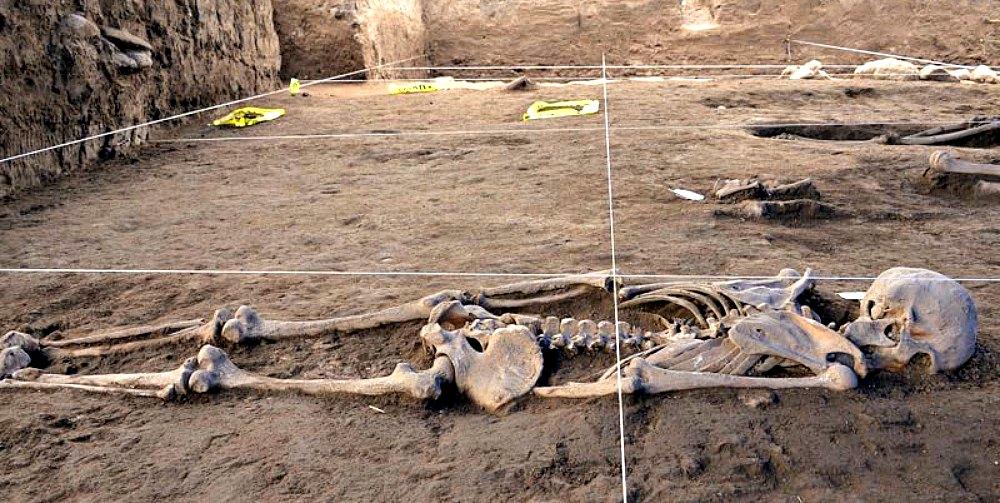Portada - Primer plano de uno de los muchos esqueletos recuperados, junto con ofrendas, por un equipo de la Dirección de Salvamento Arqueológico del INAH. (Fotografía: Melitón Tapia/INAH)