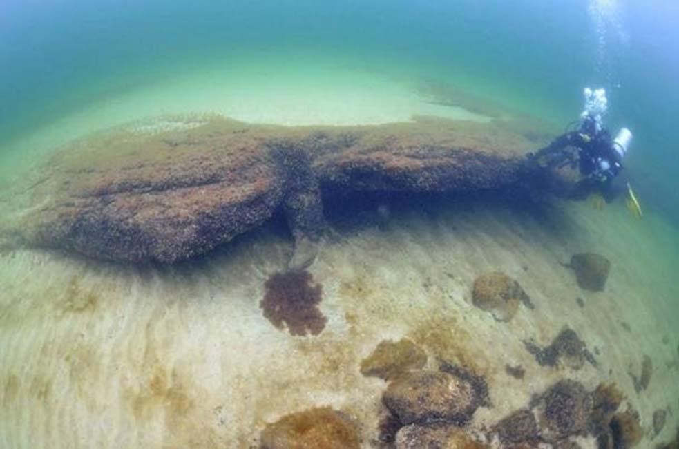 Portada - Recientes descubrimientos apuntan a una pesca masiva, y por lo tanto a un asentamiento semi-permanente. Fotografía: Arne Sjöström