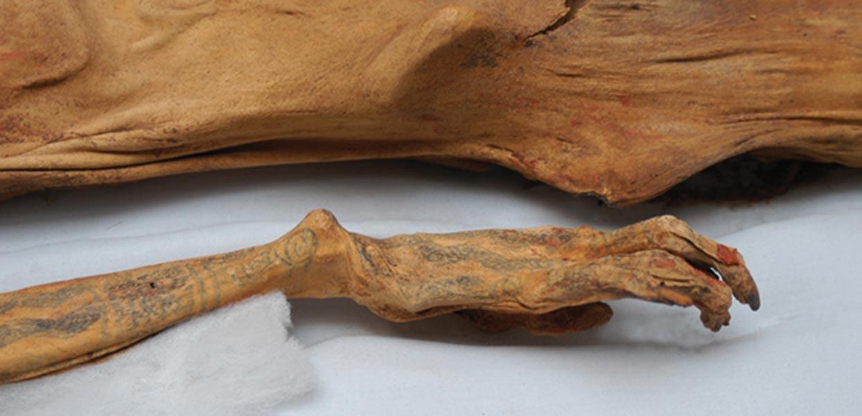 Portada - El brazo tatuado de la Señora de Cao (archaeology.org)