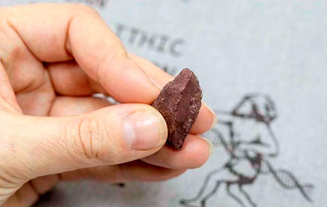 Portada - Este pedazo de hematita descubierto en la cueva de Denisova era utilizado como crayón en la prehistoria para realizar obras de arte en la cueva. Fuente: SBRAS Instituto de Arqueología y Etnografía