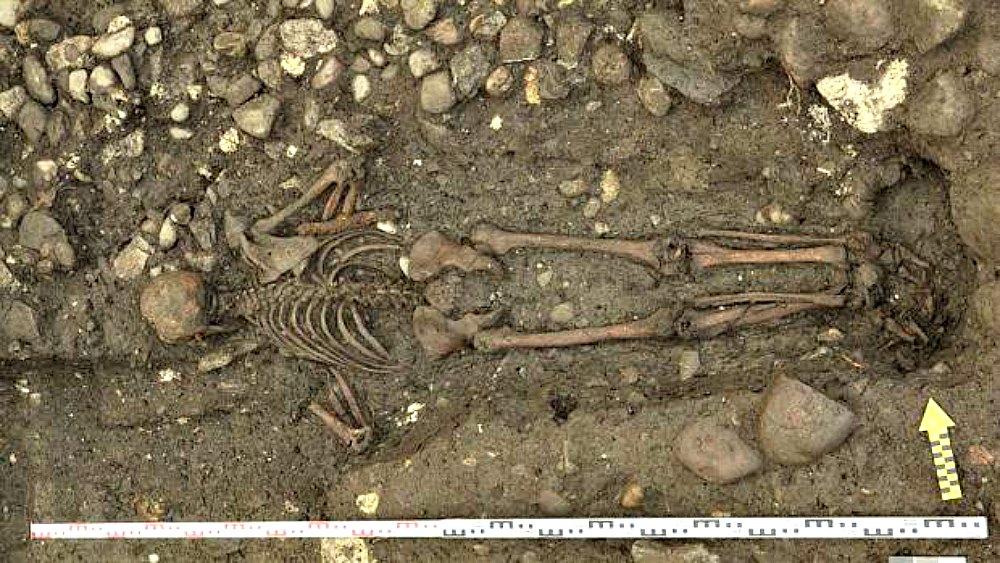 Portada - Fotografía del esqueleto descubierto recientemente de un hombre enterrado boca abajo en la Suiza del siglo XVII. (Fotografía: ABC/Archäologischer Dienst des Kantons Bern)
