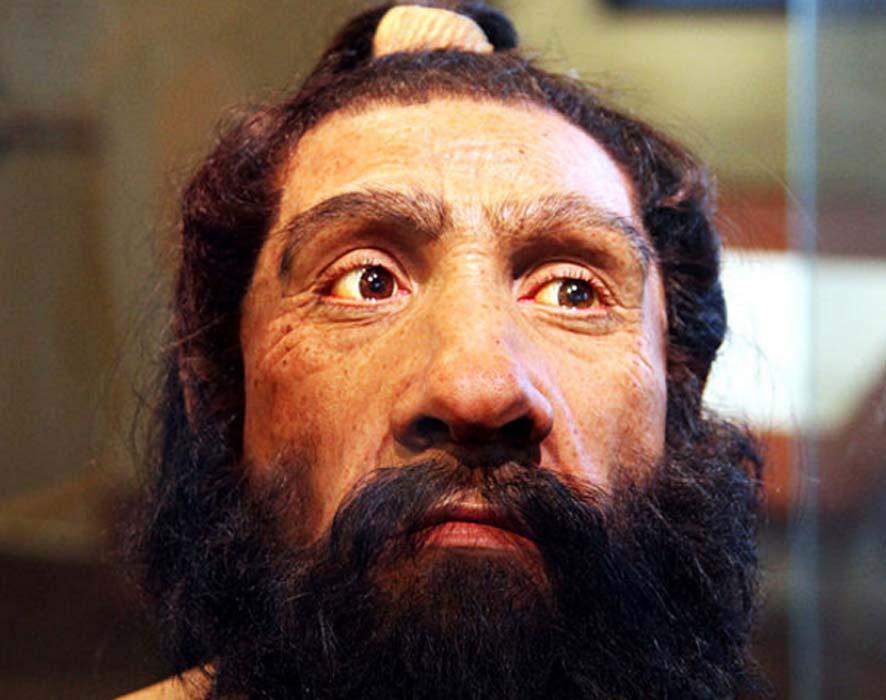 Portada - Modelo de Neandertal adulto expuesto en la Sala del Origen del Ser Humano del Museo Smithsoniano de Historia Natural de Washington, D.C. (CC by SA 2.0)