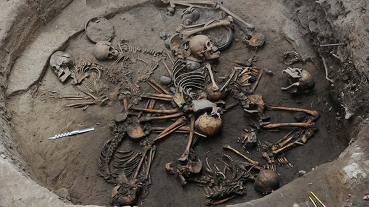 Portada - Los diez esqueletos hallados en Tlalpan, Ciudad de México, fueron dispuestos formando una espiral. (Imagen: Mauricio Marat / Instituto Nacional de Antropología e Historia (INAH))