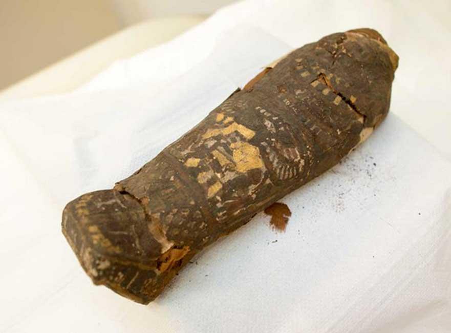 Portada - Se creía en un principio que este pequeño sarcófago albergaba un halcón momificado, pero en realidad contiene los restos de un bebé que sufrió un aborto. (Maidstone Museum)