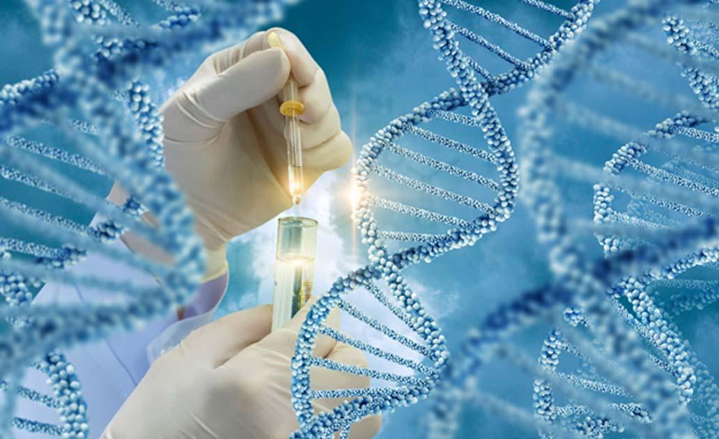 Portada - Análisis de moléculas de ADN. Fuente: natali_mis / Adobe Stock