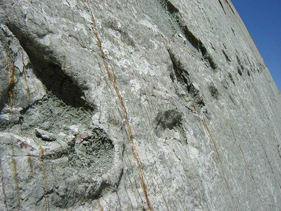 Portada - El rastro de un dinosaurio carnívoro asciende por la pared de roca en el Parque Cretácico, Bolivia. (CC BY-NC 2.0)