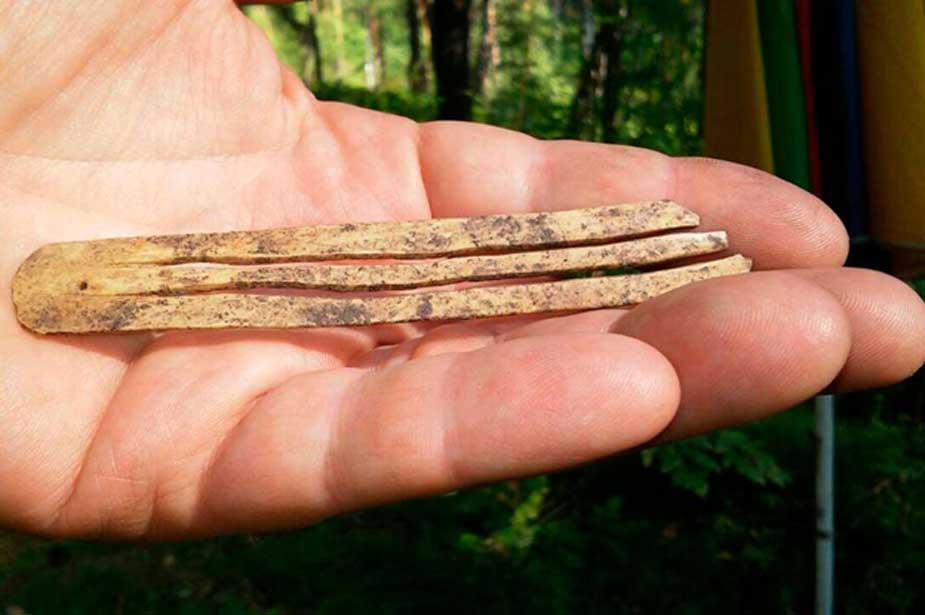 Portada - Antigua arpa de boca descubierta recientemente en la República de Altái, Rusia. Fuente: Andrey Borodovsky