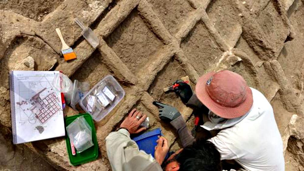 Portada - El jardín funerario se encuentra dividido en pequeñas parcelas de 30 cm de lado, sobre las que se ha encontrado una capa de limo. (Fotografía: ABC)