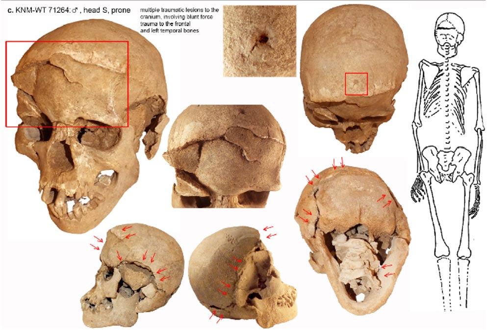 Portada-Uno de los cráneos destrozados del Lago Nataruk, Kenya. Fotografía: Mirazón Lahr et al
