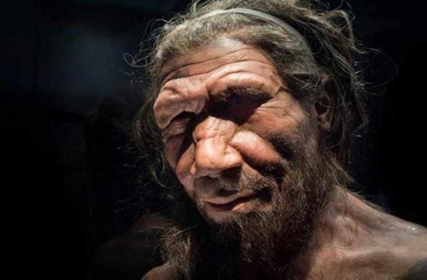 Portada - Reproducción de hombre de Neandertal expuesta en el Museo de Historia Natural de Londres. Fuente: CC BY NC ND 2.0