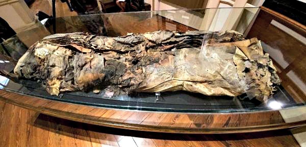 Portada - La llamada momia número 8, erróneamente identificada como Artemi Semidán y expuesta en el Museo Canario de Las Palmas de Gran Canaria. (Fotografía: EFE/Ángel Medina G.)