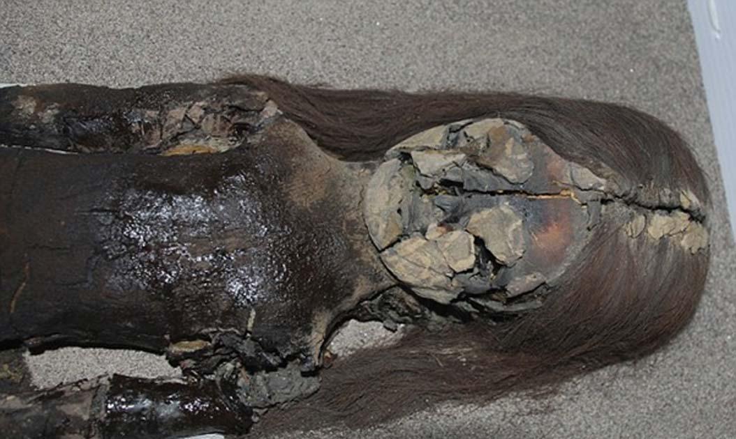 Portada - Momia Chinchorro con signos de deterioro en el pecho. Su piel se está convirtiendo en un limo negruzco. Fotografía: Vivien Standen.