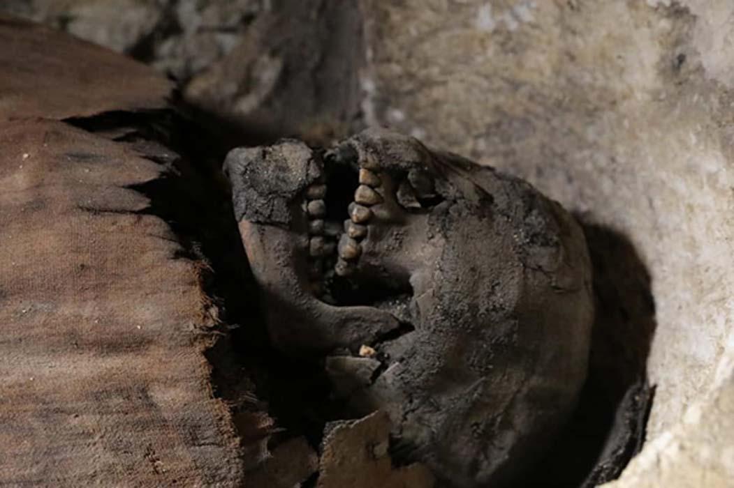 Portada - Una de las momias recientemente descubiertas en la necrópolis de Tuna El-Gebel. Crédito: Ministerio de Antigüedades egipcio