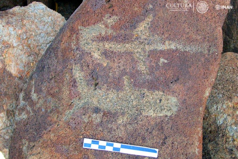 Portada - Uno de los petroglifos descubiertos recientemente en el estado mexicano de Baja California Sur con representaciones de peces. (Fotografía: Carlos Mandujano/INAH)