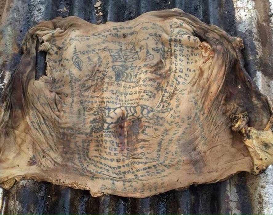 La piel hallada en Tailandia cubierta de tatuajes y sorprendentemente intacta. (Exclusivepix Media)