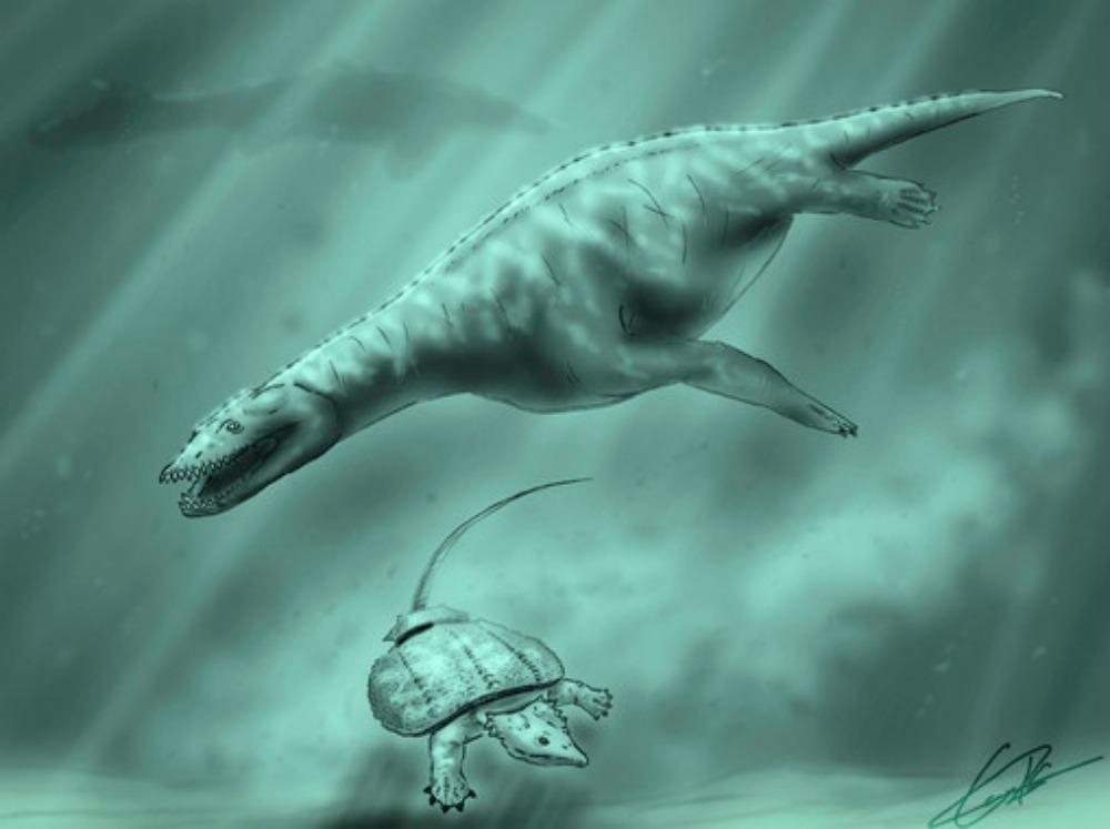 Portada-Recreación de los mares que cubrían Manzanera hace unos 230 millones de años, con un placodonto en la parte inferior de la imagen, un simosaurus en el centro y al fondo, la silueta de un ictiosaurio. / Reconstrucción de Carlos de Miguel Chaves (UNED y FCPTD)