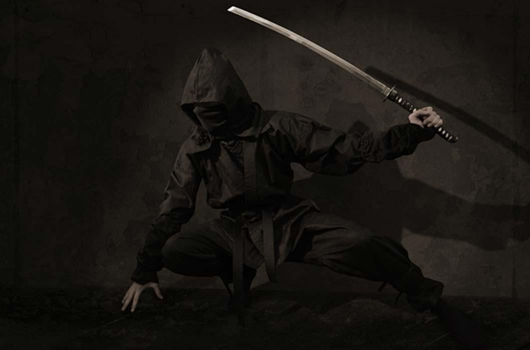 Portada - Guerrero ninja (Dominio público)