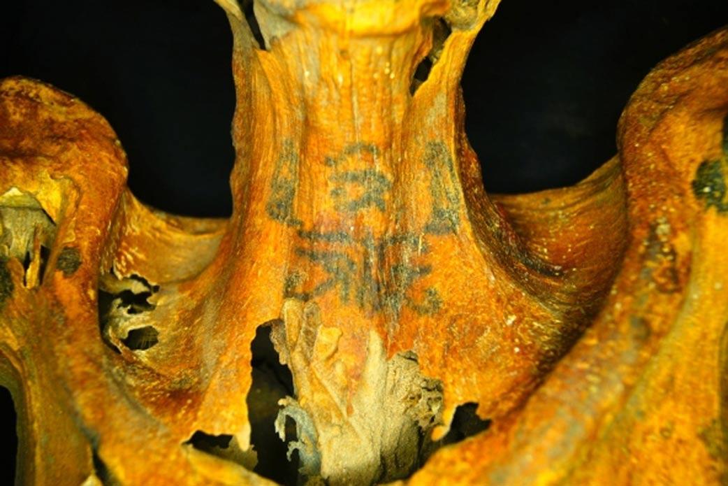 Portada - Entre los tatuajes de la momia (hilera superior, sobre el cuello) se observa un Ojo de Horus, símbolo protector, flanqueado por dos babuinos sentados. (Fotografía: Anne Austin)