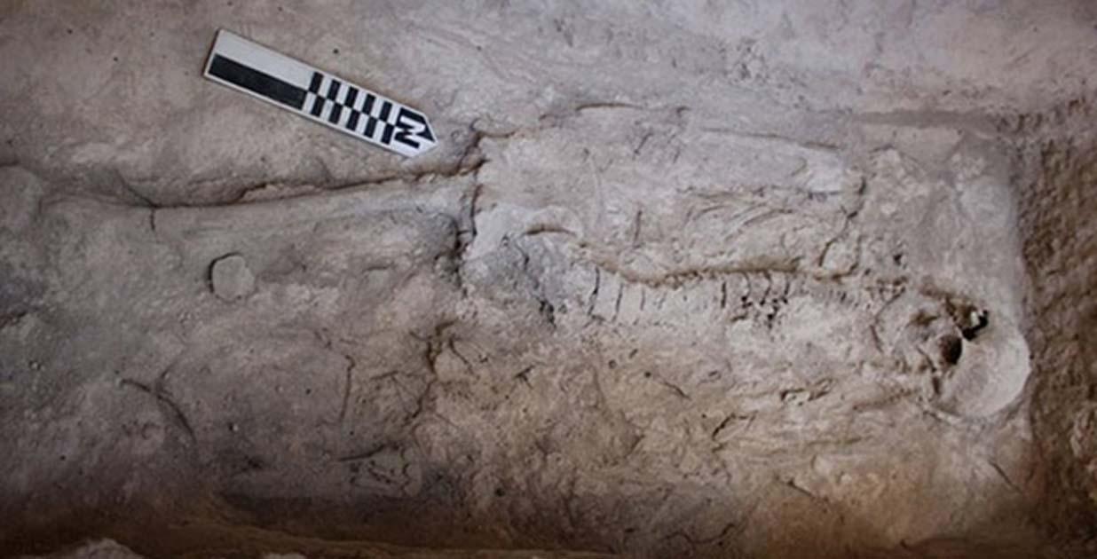 Portada - Restos humanos hallados en una de las tumbas (Ministerio de Cultura griego)