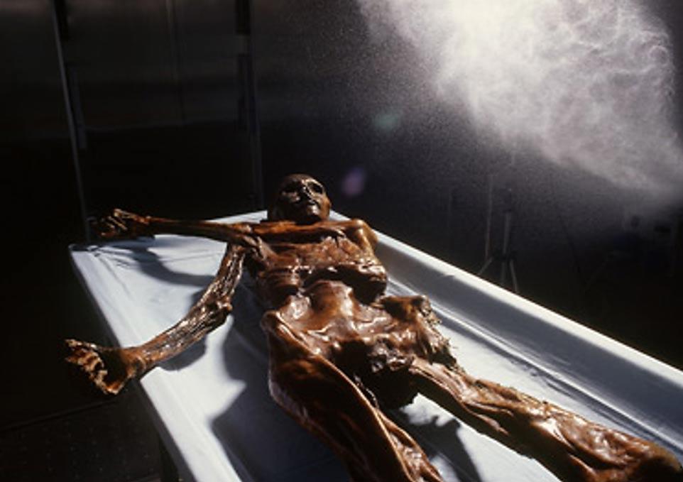 Portada-Conservación de Ötzi, el Hombre de Hielo. Fotografía: Museo arqueológico de Tirol del Sur