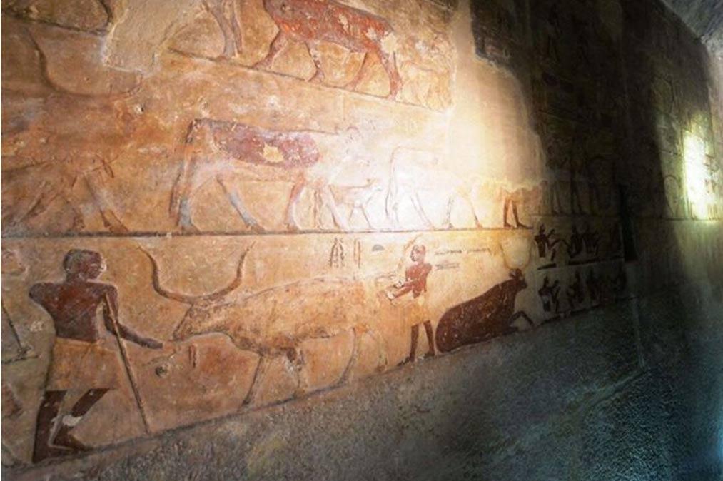 Tombs-Opened-egypt.jpg