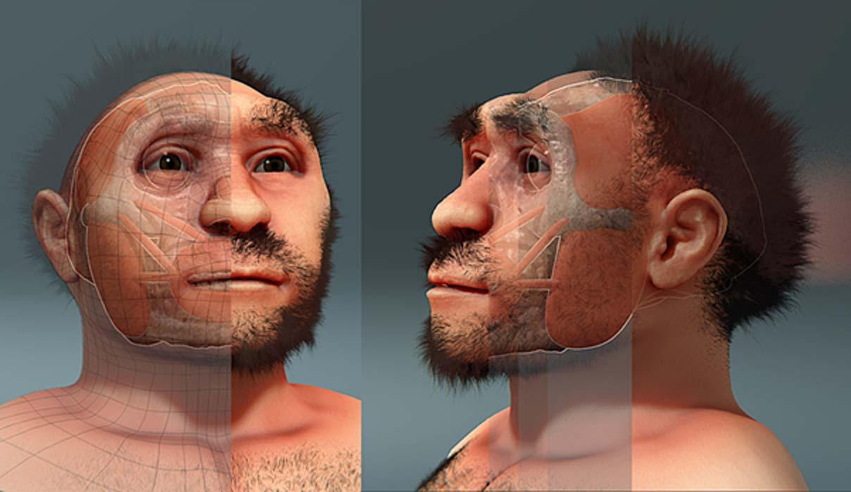 Reconstrucción facial forense de Homo erectus