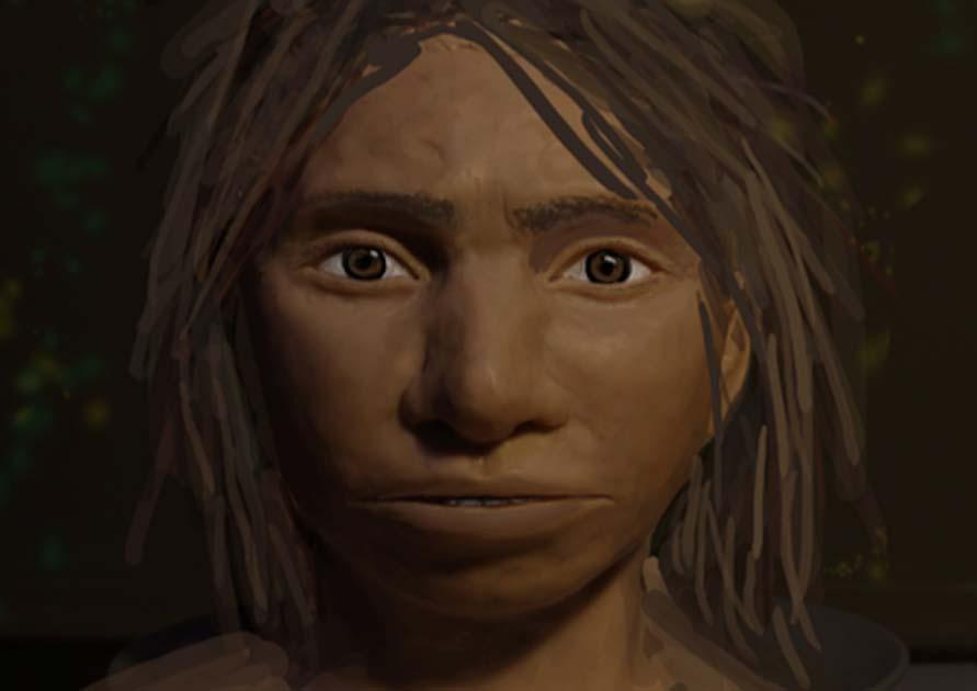 Un retrato preliminar de una hembra juvenil de Denisovan basada en un perfil esquelético reconstruido a partir de antiguos mapas de metilación del ADN. Fuente: Maayan Harel