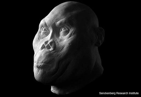 ancient-hominids-reconstruction-1.jpg