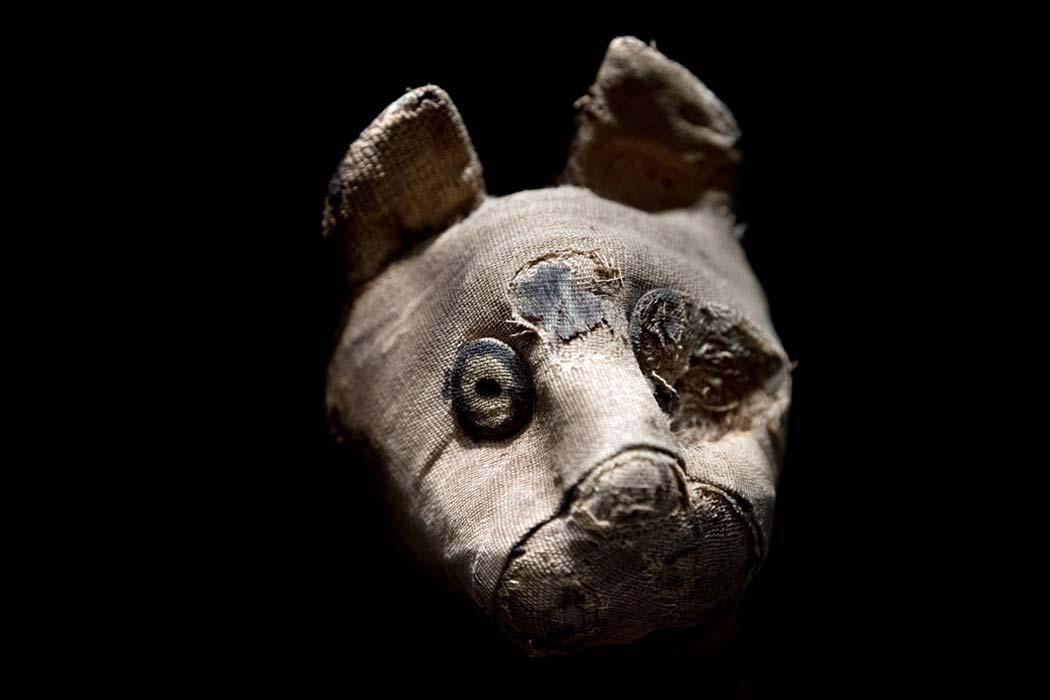 Gato momificado encontrado en tumba egipcia