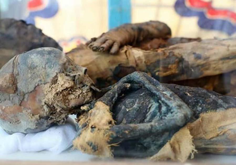 los restos momificados de la mujer y el niño encontrados en la tumba. Crédito: Ministerio de Antigüedades.