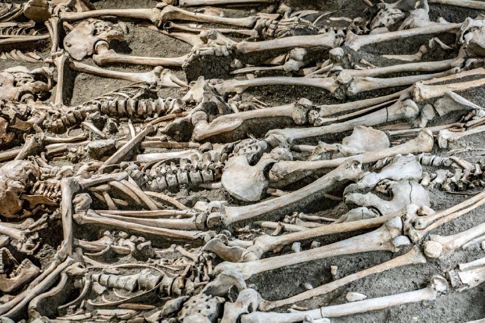 Los futuros arqueólogos encontrarán principalmente restos humanos cuidadosamente ordenados, según un estudio. Fuente: milkovasa / Adobe Stock