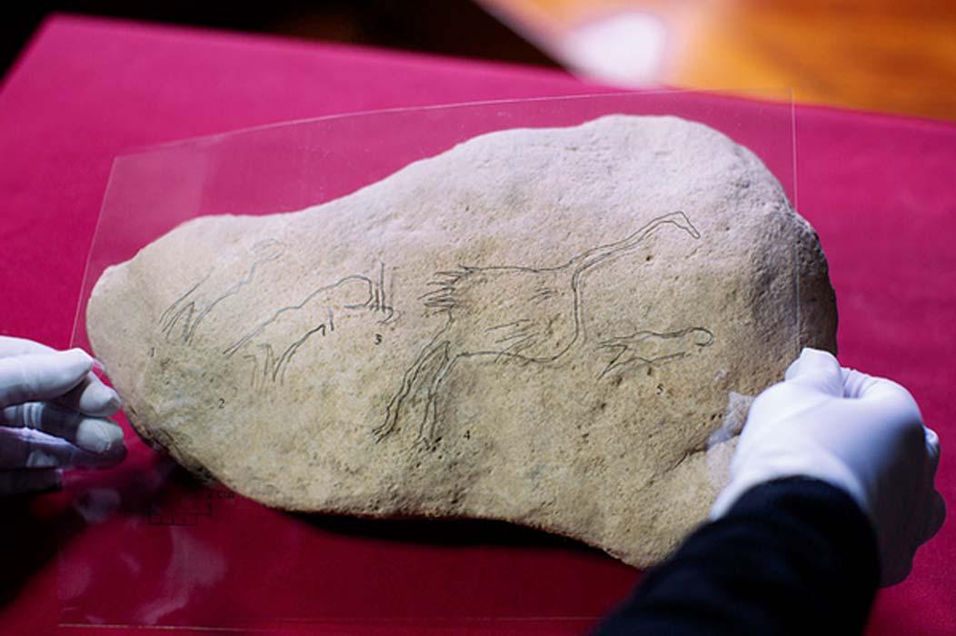Imagen de los hallazgos con un trazado de las figuras grabadas en la pieza.
