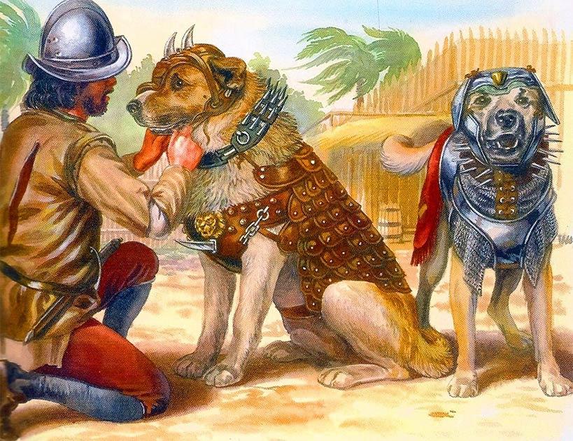 una ilustración de perros de guerra españoles con armadura de batalla, que debe haber sido similar al Becerrillo de la fama del conquistador español. (Dominio público).