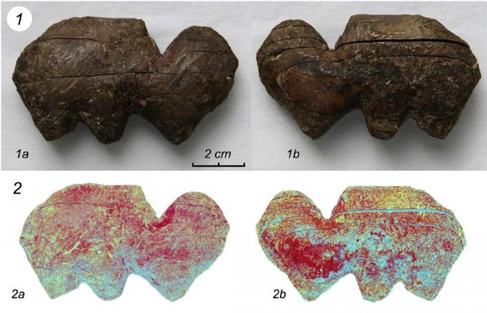 Se analizaron piezas de marfil de mamut tallado de Siberia para determinar el método de producción.