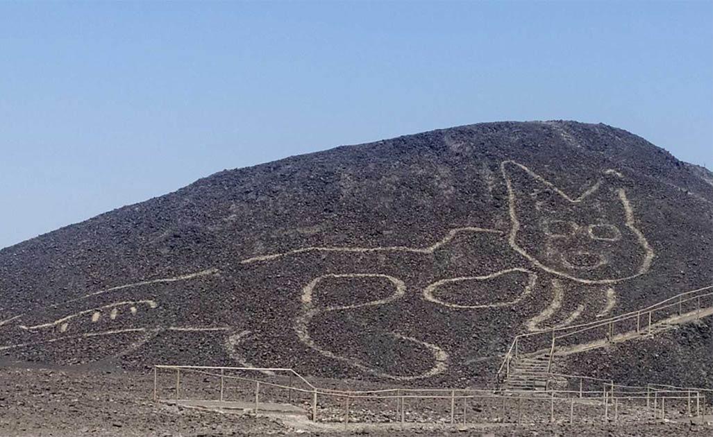 Geoglifo de gato encontrado cerca de las mundialmente famosas Líneas de Nazca. Fuente: Ministerio de Cultura del Perú