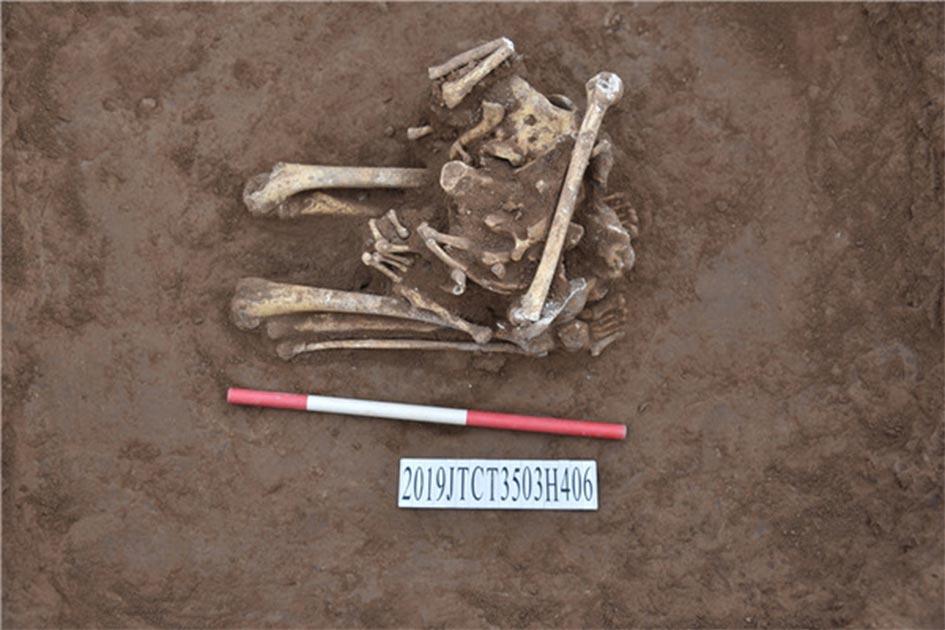 Restos óseos en un sitio arqueológico en la provincia de Henan sugieren que el esqueleto decapitado era un antiguo sacrificio chino. Fuente: Instituto Provincial de Reliquias Culturales y Arqueología de Henan / Xinhua