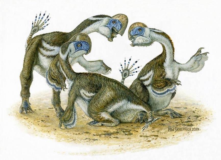 Impresión artística del dinosaurio avarsan Oksoko.